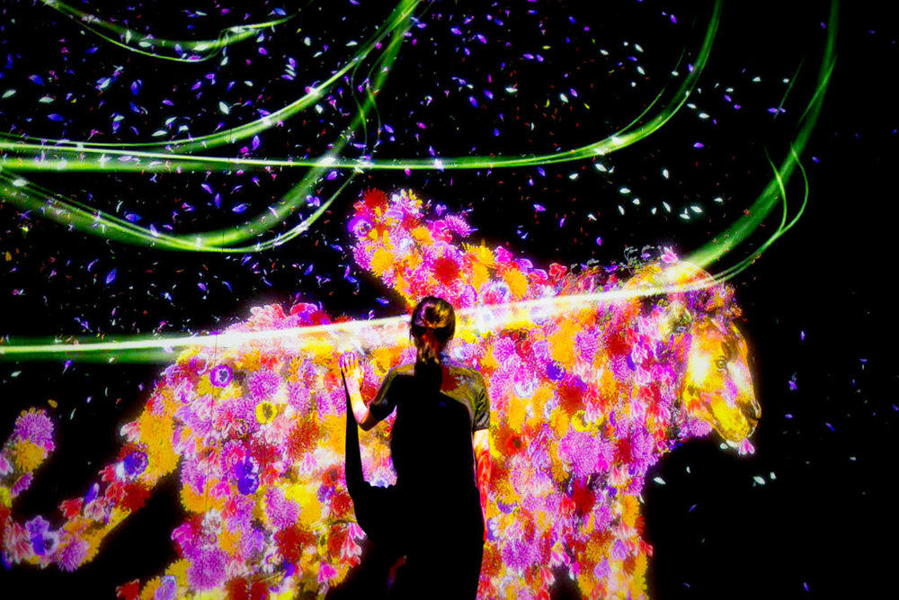 'Animals of Flower Symbiotic'. Courtesy of teamlab