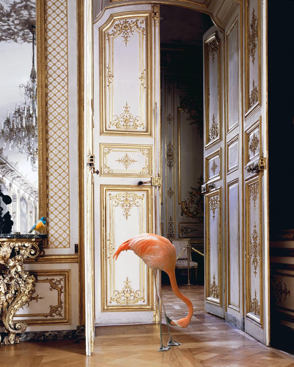 The Battle Gallery (Château Chantilly) 2003-08 © Karen Knorr
