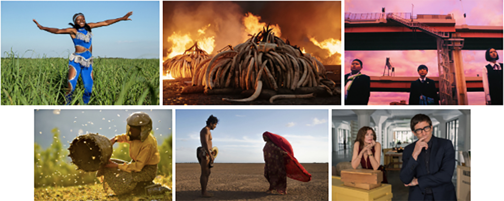 Top, L-R:   Pahokee  , photo by Patrick Bresnan;   Anthropocene: The Human Epoch  ,   photo courtesy of Sundance Institute;   WE ARE LITTLE ZOMBIES   , photo courtesy of Sundance Institute. Bottom, L-R:   Honeyland   , photo by Samir Ljuma;   Birds of Passage   , photo by Mateo Contreras;   Velvet Buzzsaw  , photo by Claudette Barius .
