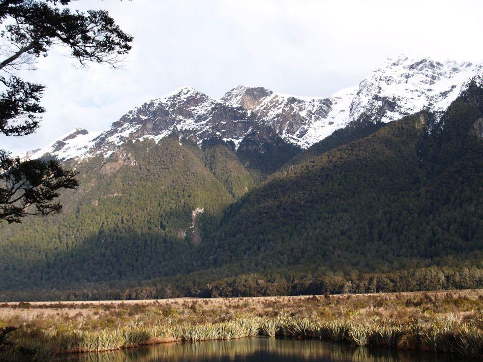 Fiordland 1.jpg
