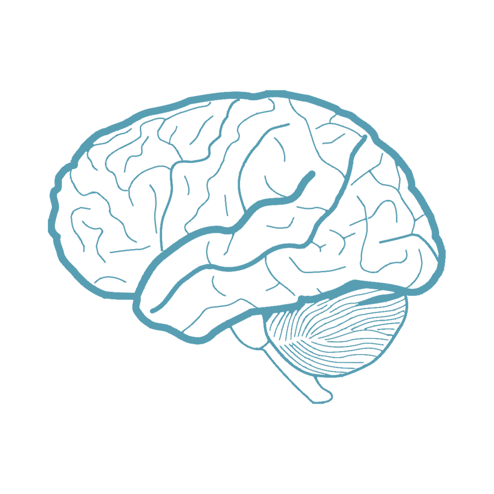 Reduced Brain Function   Staying in one position for long periods of time has been shown to restrict oxygen supply to the brain resulting in a loss of productivity.