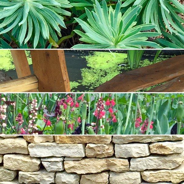 Crossbones Garden1.jpg