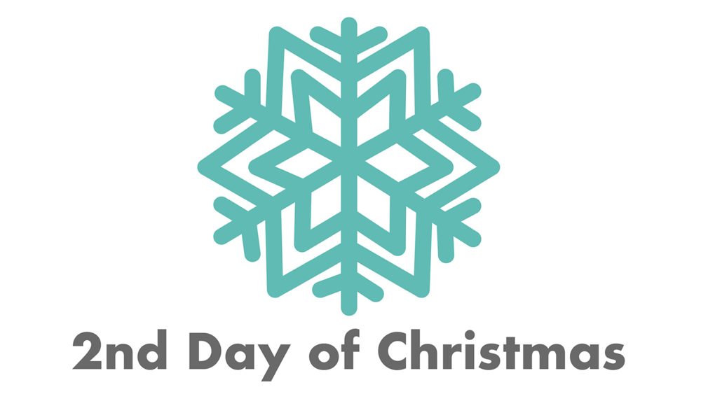 Day 2 snowflake with text.png