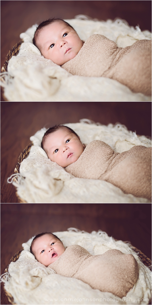 grand junction newborn photographer