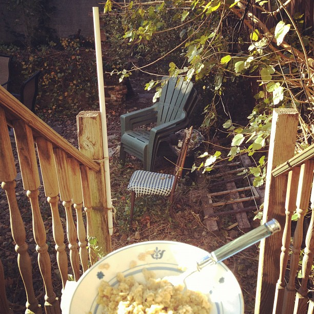 red_hook_backyard_breakfast.jpg