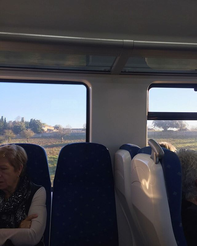 Tog tåget in till Palma idag och kom hem 320€ fattigare... #älskatandläkaren Men soligt och 15 grader gjorde att jag i alla fall inte grät HELA vägen hem... 😅 Och hann läsa lite på tåget också. Fortfarande Vindens skugga som jag började på i april. Aldrig läst en bok så långsamt tror jag...