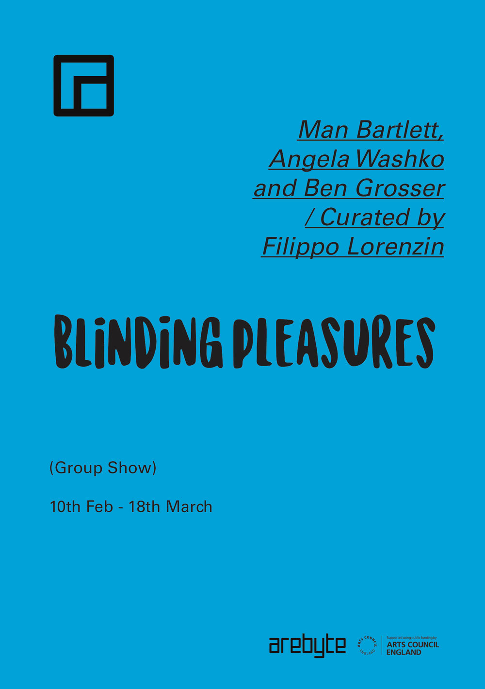 Booklet - Blinding PleasuresNEW OK OKOKOK.jpg