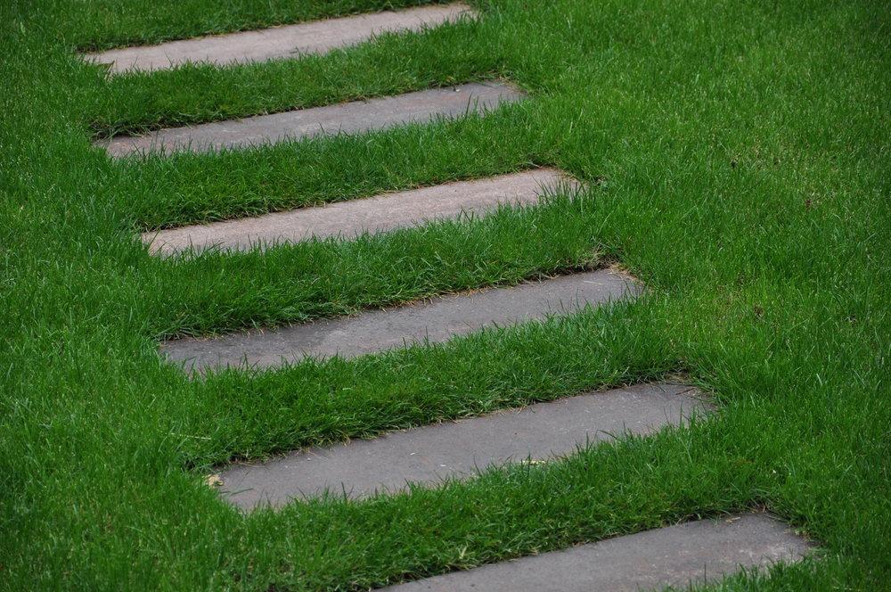 Fijne Tuin Inrichting : Leukste trends in tuin en terras in advies op maat van een