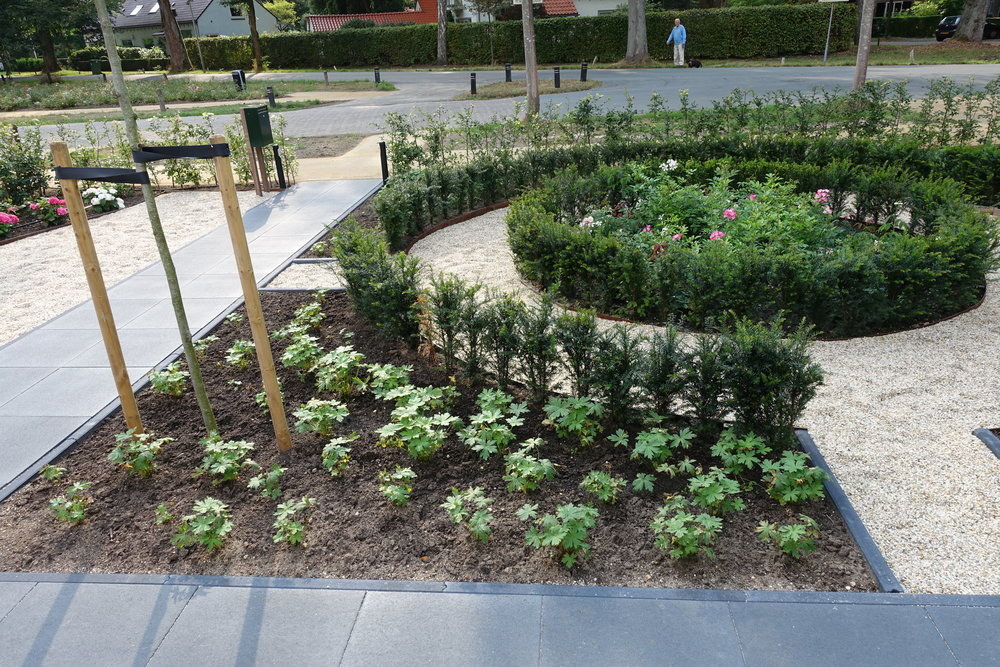 Tuinontwerp Huis ter Heide   200 m2  Strakke en moderne tuin.