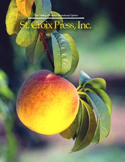 Fruitful Options - Known for award-winning printing and innovative solutions, St. Croix Press helps clients maximize results with promotional inserts, dramatic gatefolds, protective polybags, outserts, belly bands, special coatings, and more. For more information download our Catalog of Fruitful Options. Or request a print version from your Customer Service Rep.