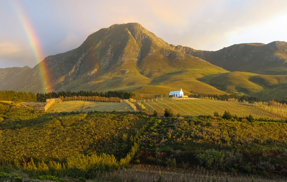 VINO VALLEYS WINE TOUR - 2 Days. 1 Night. 6 Locations. Distinctly different but equally delightful. Join us as we tour through the Hemel & Aarde and Roberston Wine Valleys. This is a personal favourite of the vino and landscape lover!FROM $330.00 PER A PERSONVIEW THIS TOUR