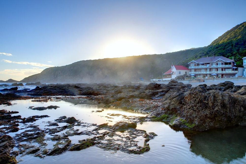 CAPE TO GARDEN ROUTE - 4 Days. 4 Regions. For the traveler looking to experience a little bit of everything that the Western Cape has to offer. From Cape Town to Garden Route and through the Klein Karoo,  these curated experiences range from wine pairings to Big 5 viewings to boat cruises and more. See it all!VIEW THIS TOUR