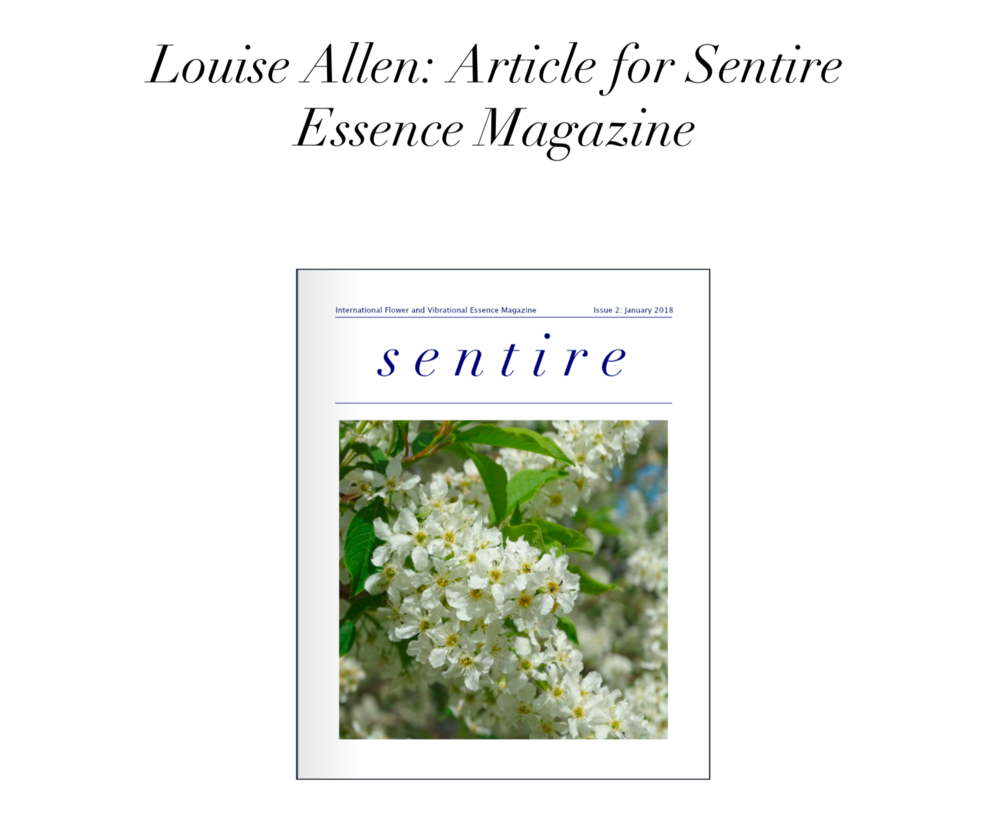 Download Sentire Article -