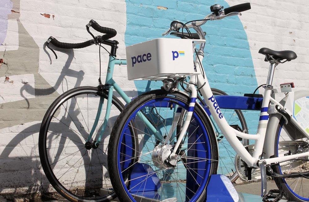 Pace Bikes.jpg