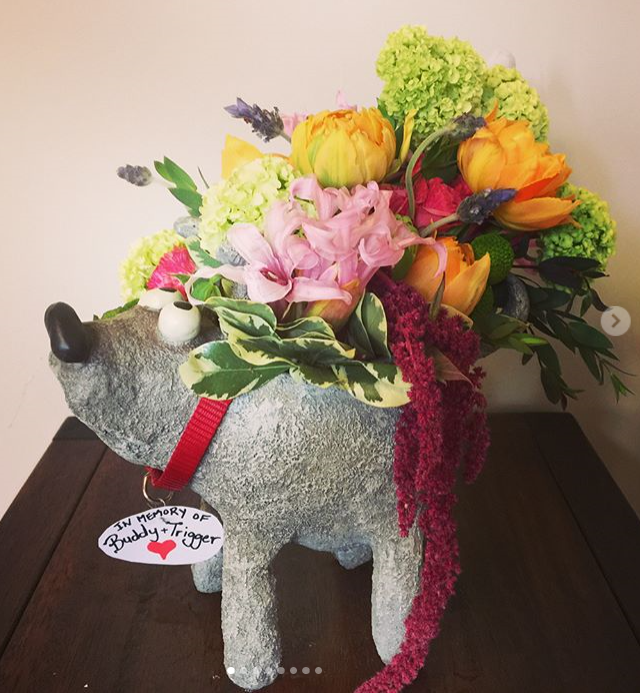 dog flowers.png
