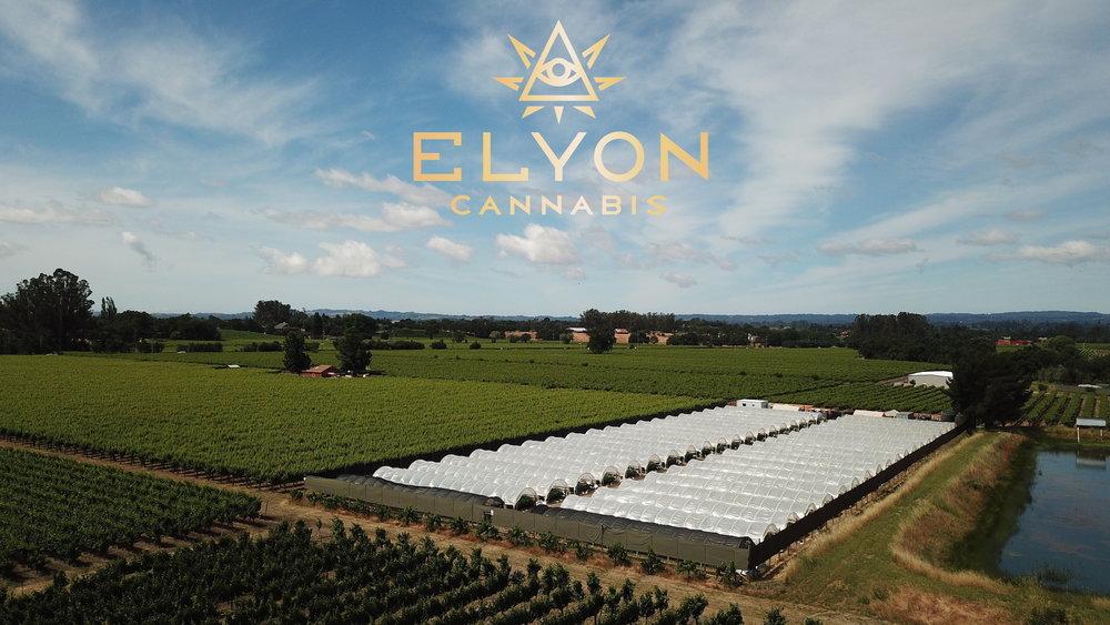 Elyon Cannabis Garden