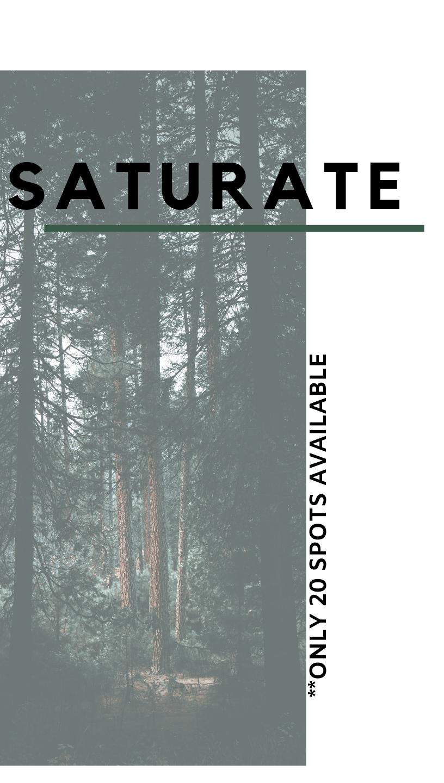 saturate (1).png