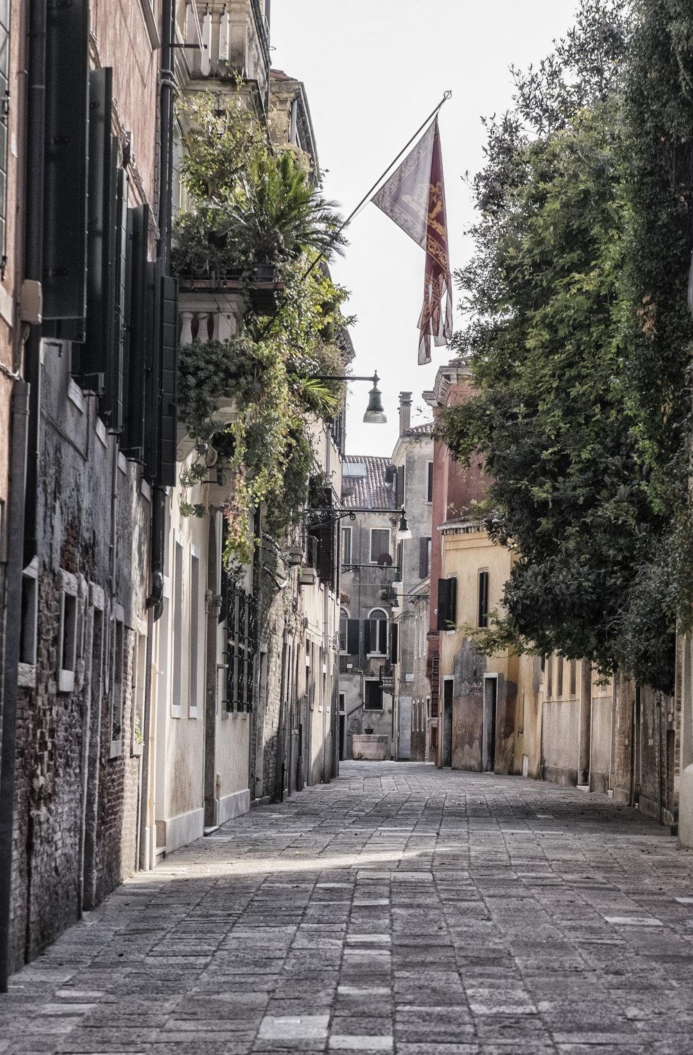 Venice.Alley.Flag.jpg