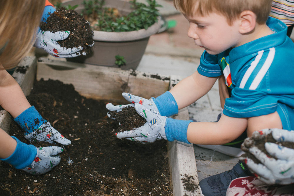 children hands in dirt