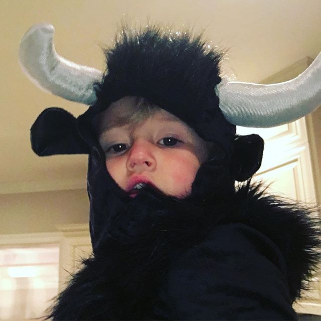 The Bull is ready