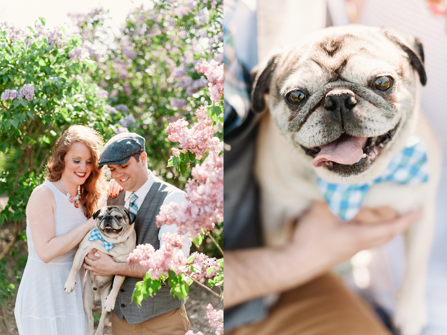 Engagement Session at Lilacia Park with Pug by Two Birds Photography02