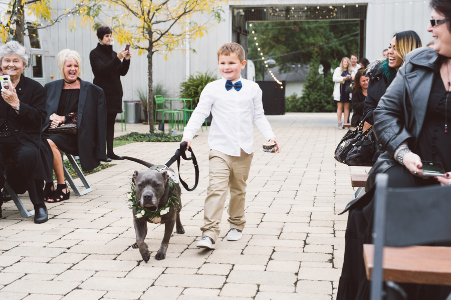 Ring bearer walks flower dog down the aisle.