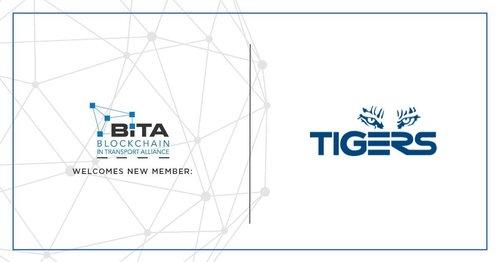 BiTA + Tigers.jpeg