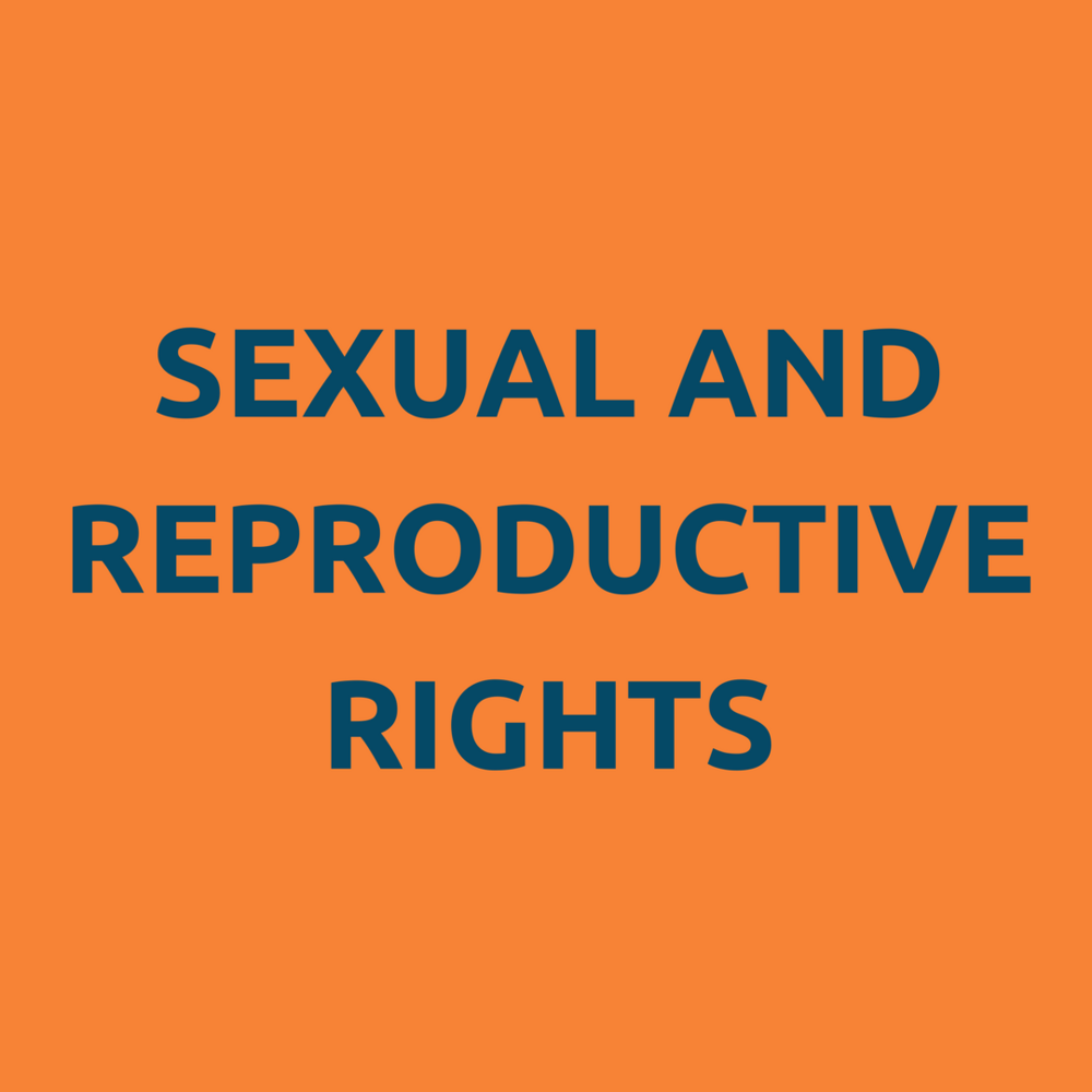 sexual and repro rights 5.3.png