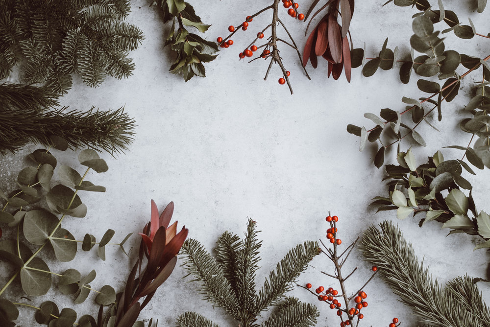 Your Eco-friendly Holiday Gift Guide -