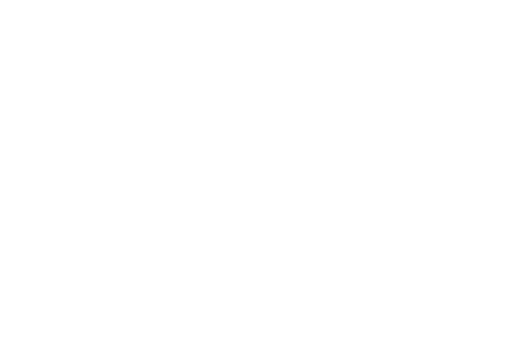 Official Selection - Finish Line Script Competition - 2017.png