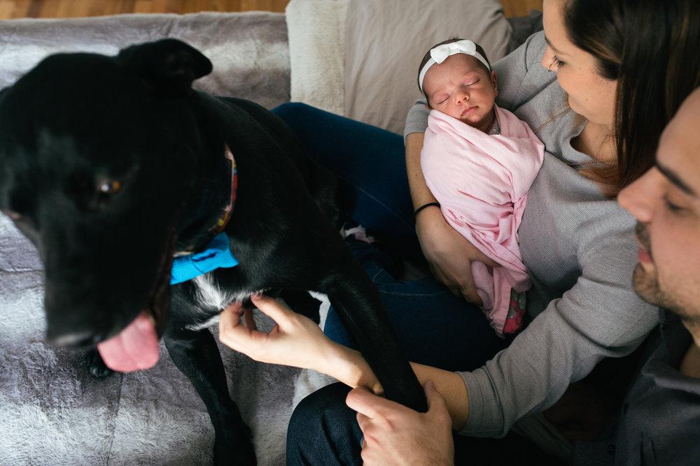 calgary newborn photo 43