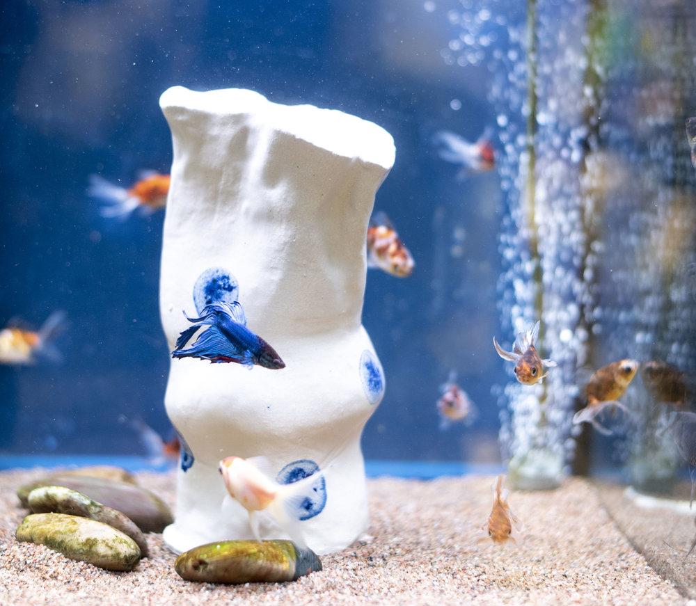 UnderwaterEdition_19111801.jpg