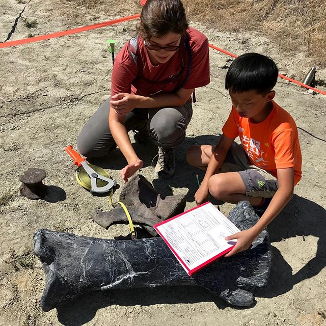Identifying and digging up dinosaur bones! We offer unique hands on learning experience! - - Interested in joining us this winter for our camps in Houston and LA?  Link in bio 👌🏽