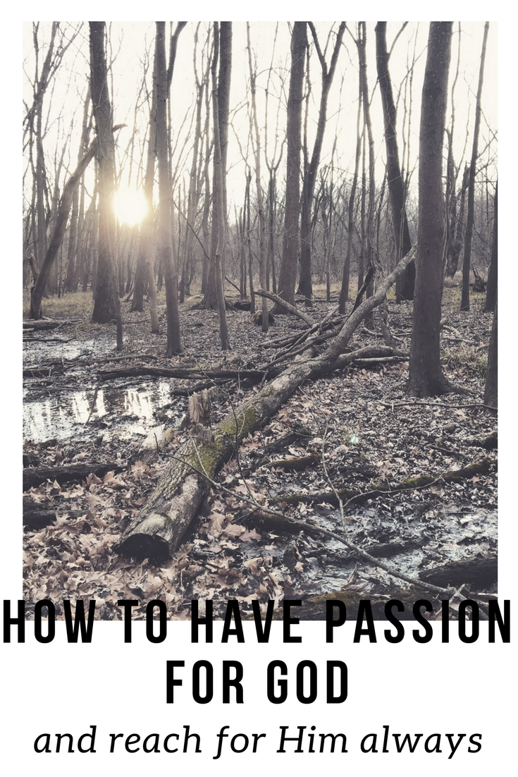 how to have passion for god.png