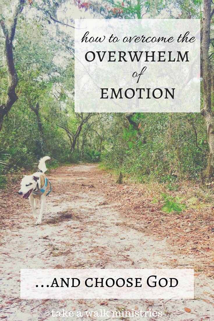 do you feel overwhelmed.png