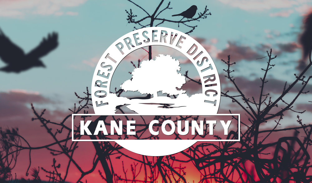 Kane County Forest Preserve Adventure.jpg