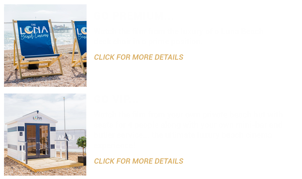 Premium & VIP Beach Tickets_web copy.png