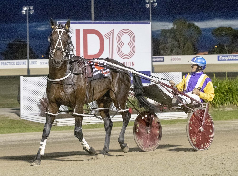 Im Pats Delight TAB Inter Dominion Pacing Championship 2nd Rd Qualifying Heat 2 Winner
