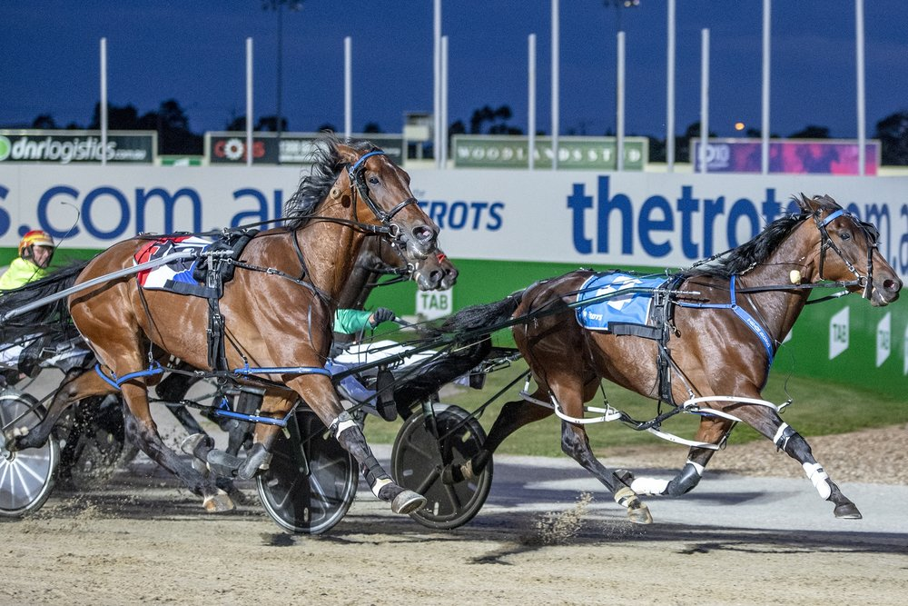 Galactic Star, the pride of Western Australia, prevails in the first heat of TAB ID18 for driver Todd McCarthy and trainers Greg and Skye Bond.