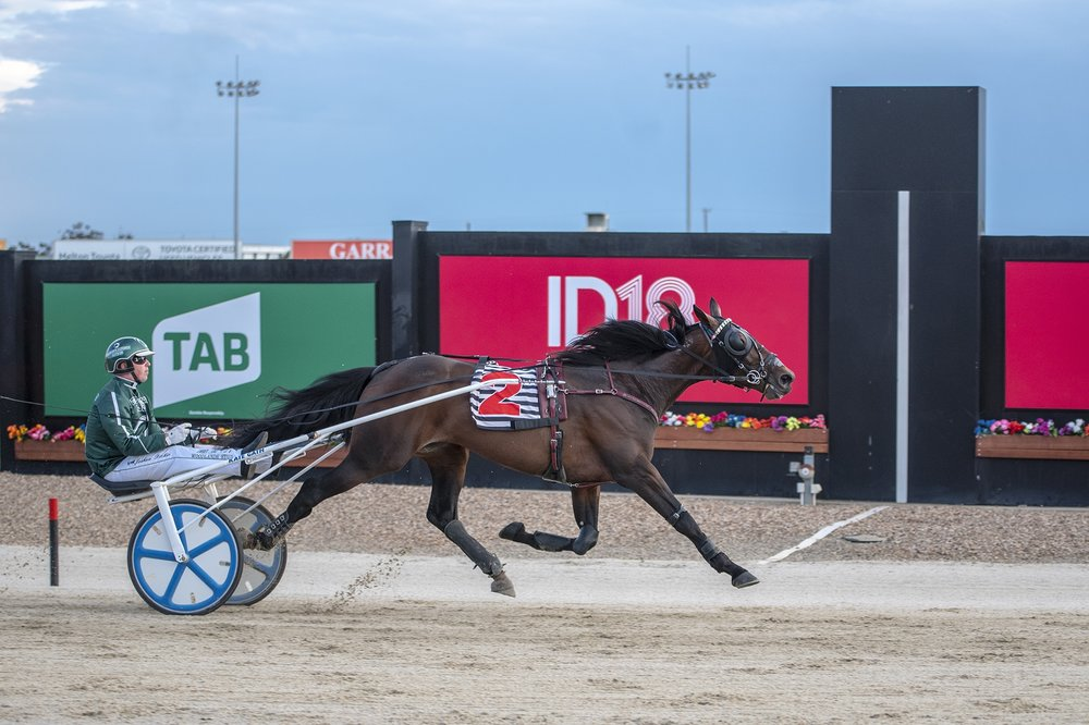 Champion New Zealand trotter Speeding Spur, for Josh Dickie, takes out his first TAB ID18 heat at Tabcorp Park Melton.
