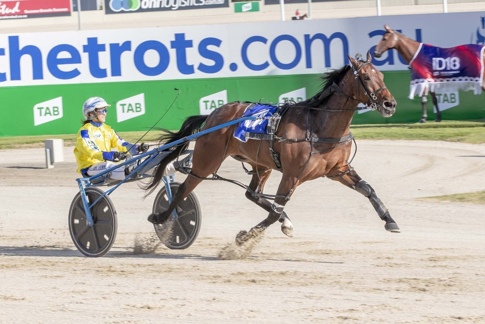 Former Swedish monte rider turned gun locally based driver Kima Frenning glides home aboard Higherthananeagle at Tabcorp Park Melton.