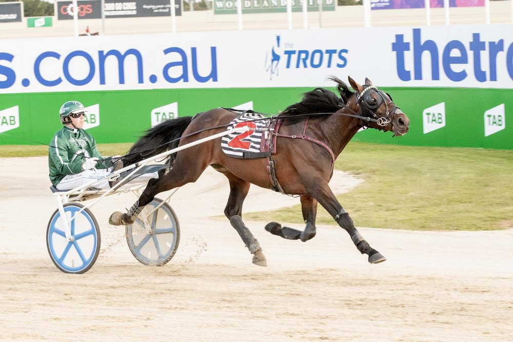 Josh Dickie and Speeding Spur take out the TAB ID18 Round 1 trotting heat.