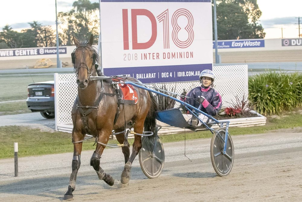 Wrappers Delight, TAB Inter Dominion Pacing Championship 2nd Round Qualifying Heat 1 Winner