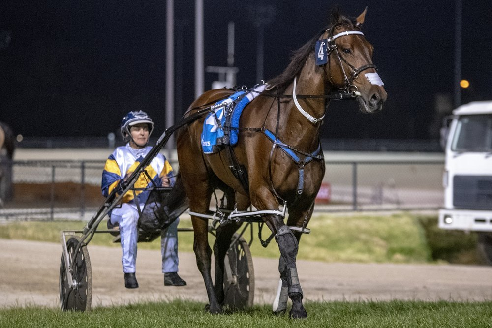 Cruz Bromac, TAB Inter Dominion Pacing Championship 3rd Round Heat 3 Winner