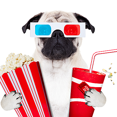 bigstock-Dog-Watching-The-Movies-210900559.jpg