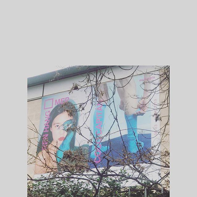 Love, ren hang exhibition