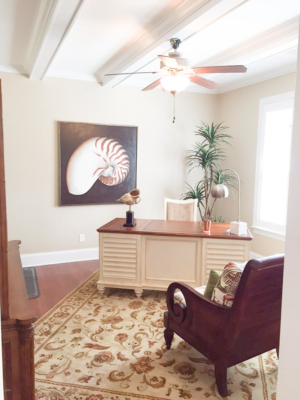 Office space with shell art and standing palm tree plant in corner