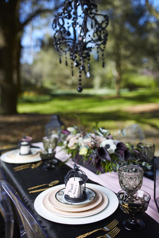 Trendy-Blush-Black-Airlie-Gardens-Wedding-3
