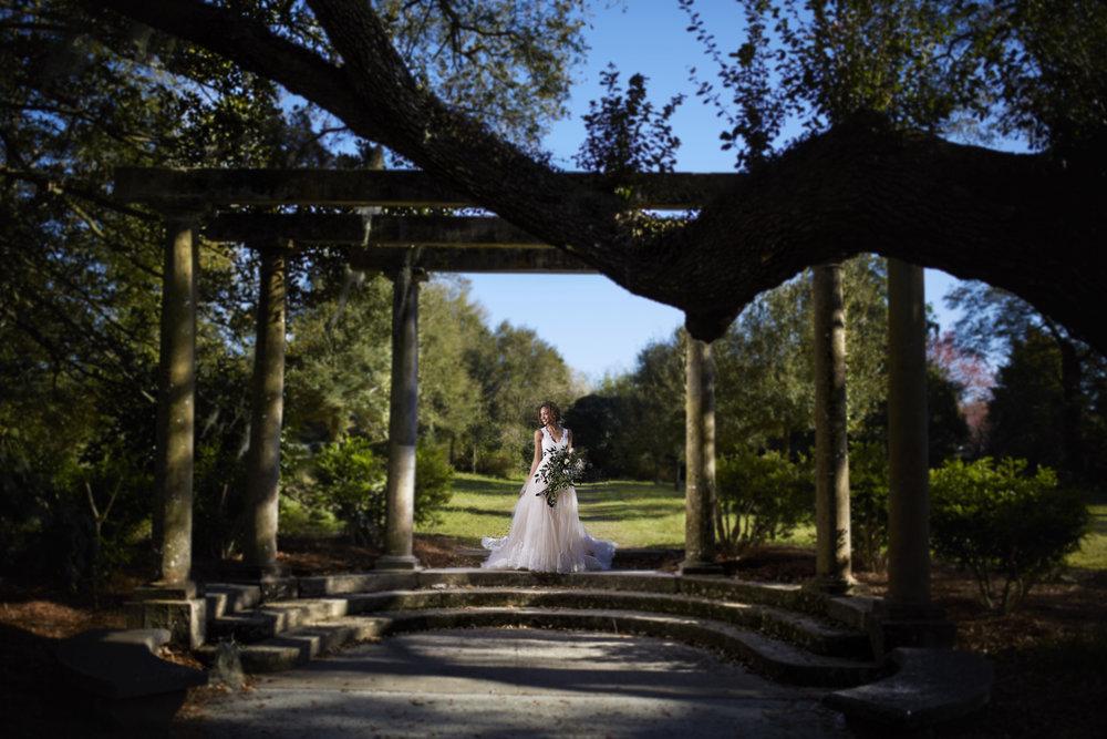 Trendy-Blush-Black-Airlie-Gardens-Wedding-11