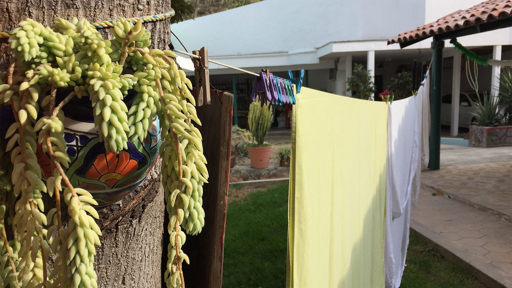 This is how I dried my clothes during my stay in Chapala. It was awesome.